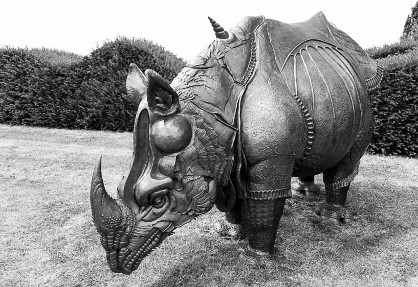 Durer's Rhinoceros